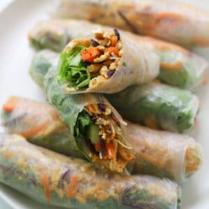 Closeup image of vegetarian tofu spring rolls on a plate.