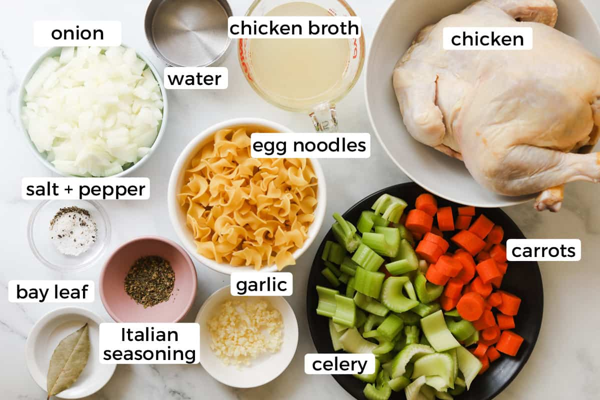 Ingredients for chicken noodle soup